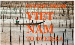 Business license vietnam - Registering a Foreign company in Vietnam