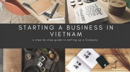 SETTING UP BUSINESS IN VIETNAM - Establishing an FDI company pursuant to the new Law on Investment