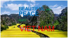 BUSINESS LICENSE VIETNAM - Business Registration Reform