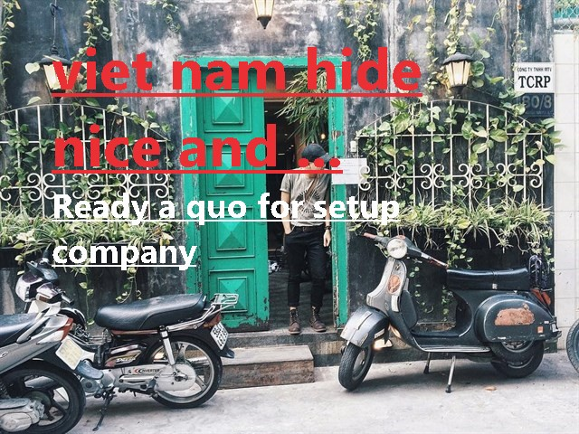 VIETNAM COMPANY FORMATION